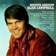 Glenn Campbell - 13- Dreams Of The Everyday Housewife